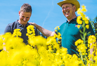 It pays off to feed oilseed rape well! image